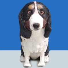 chep Pet dog